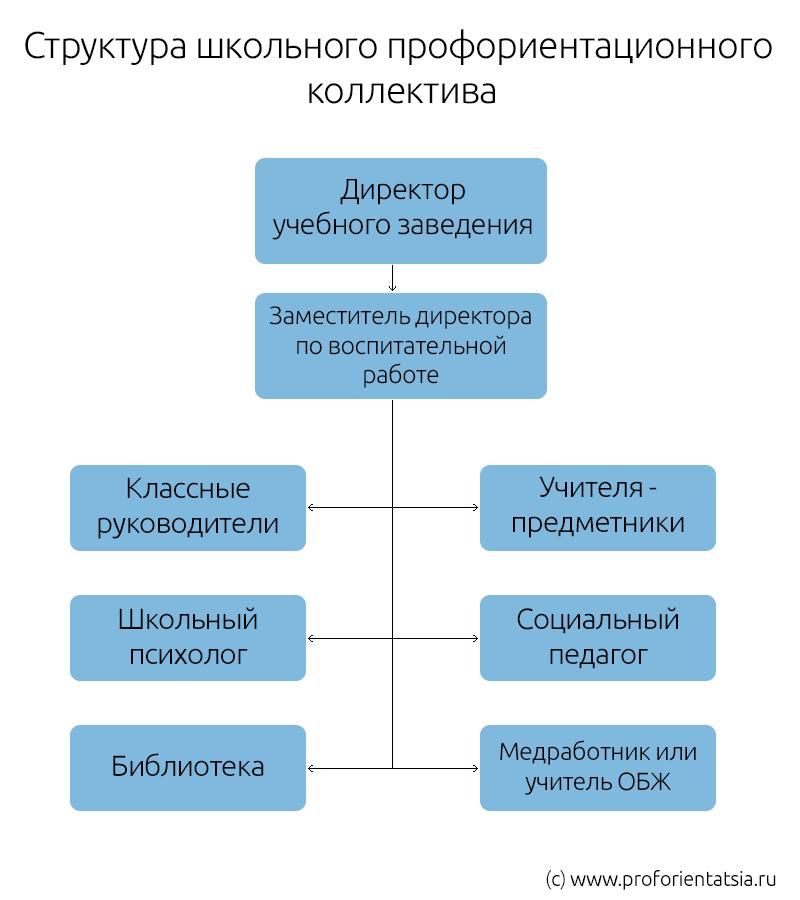 Структура школьной профориентации
